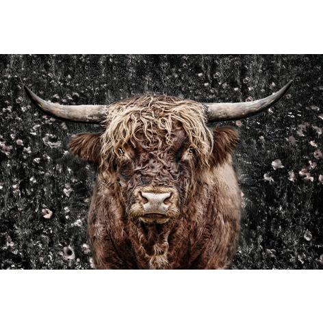 mondiart koe bruin GlasArt 80 x 120 cm