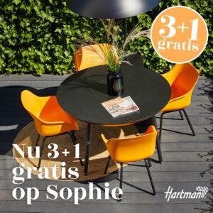 Hartman sophie 4=3 actie